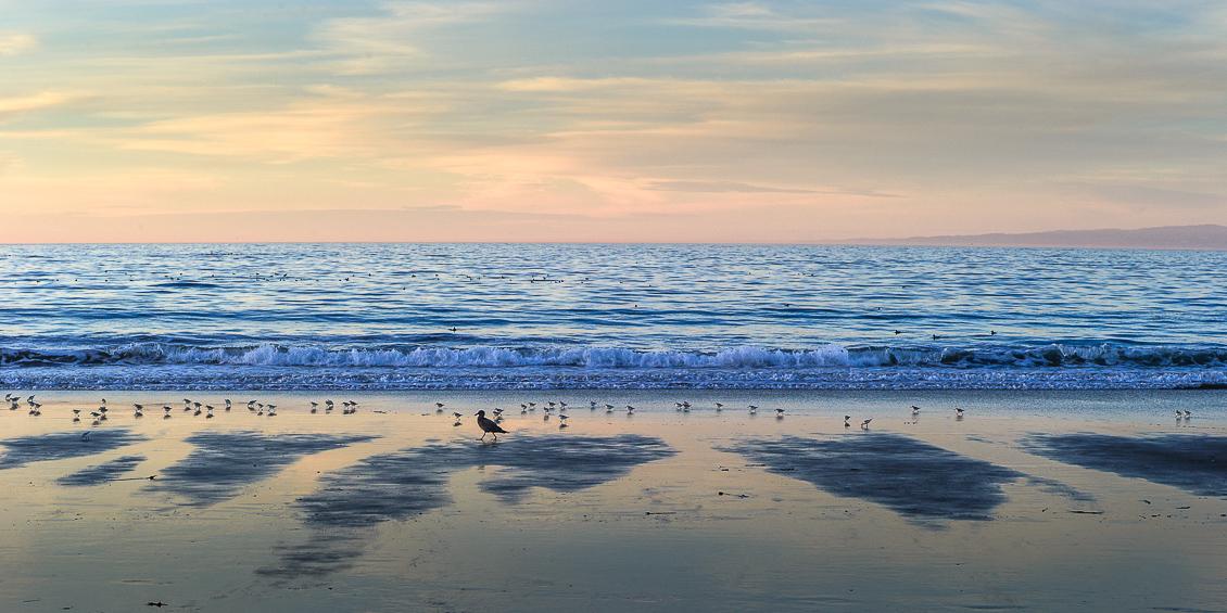 Stilla havet, Monterey, Kalifornien
